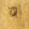 Kurz_Kresby_Bratislava_Purpur_Ateliér_kresba_reprodukcia_Leonardo da Vinci